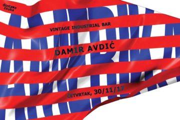 Damir Avdić cover