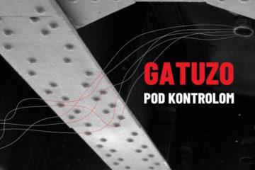 Gatuzo